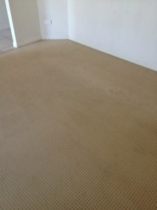 Sippy Downs Carpet cleaning 5