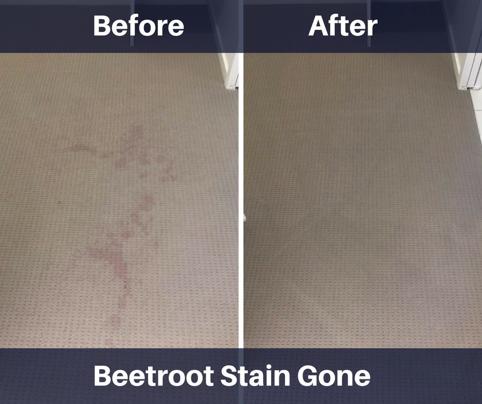 Mountain Creek Carpet Cleaning