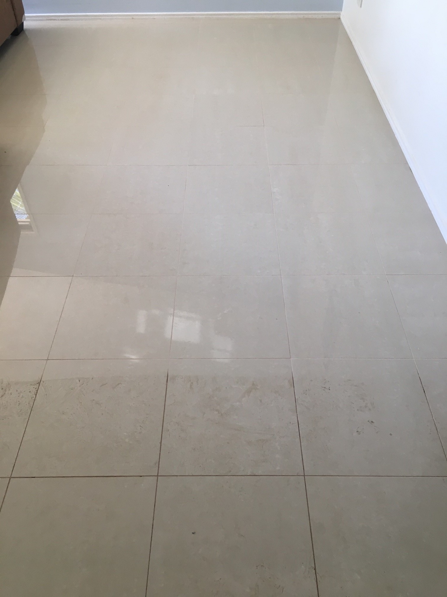 Tile And Grout Cleaning Bfs Carpet Cleaning Pest Control