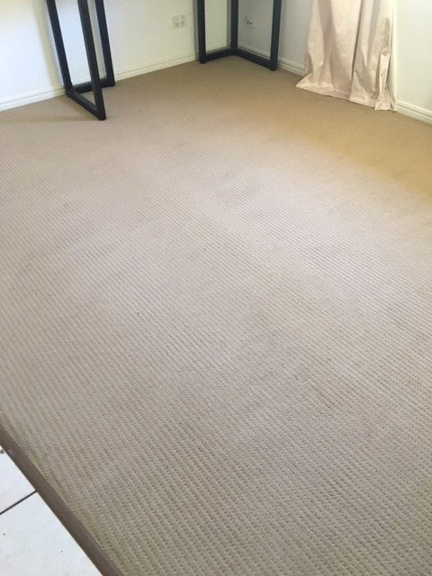 Sunshine Coast Carpet Cleaning Move Out Clean Sippy Downs